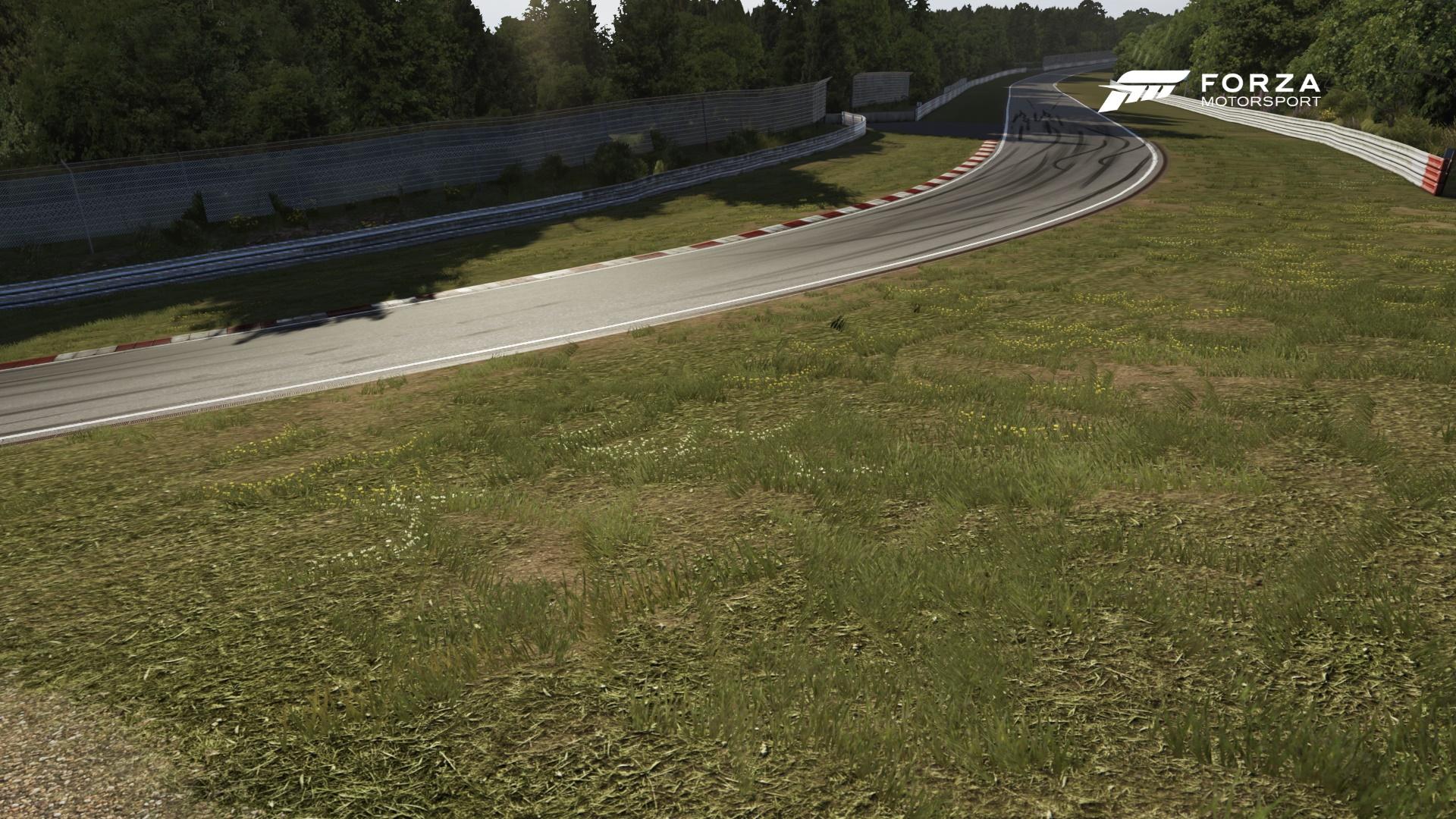 Graphismes Nurburgring Forza 6