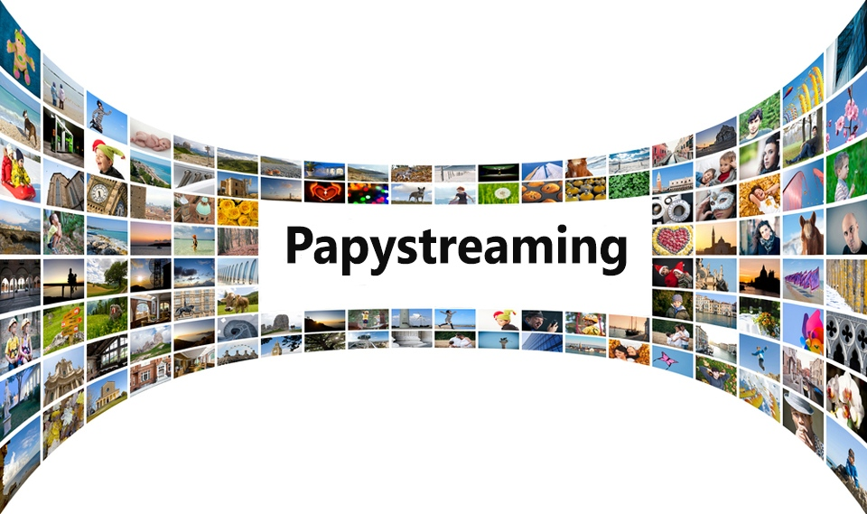 Papystreaming : vers un blocage imminent du site?
